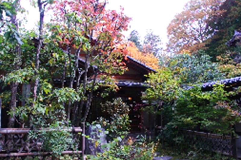 紅葉が始まっています