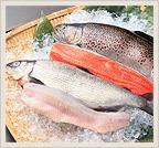 信州の川魚