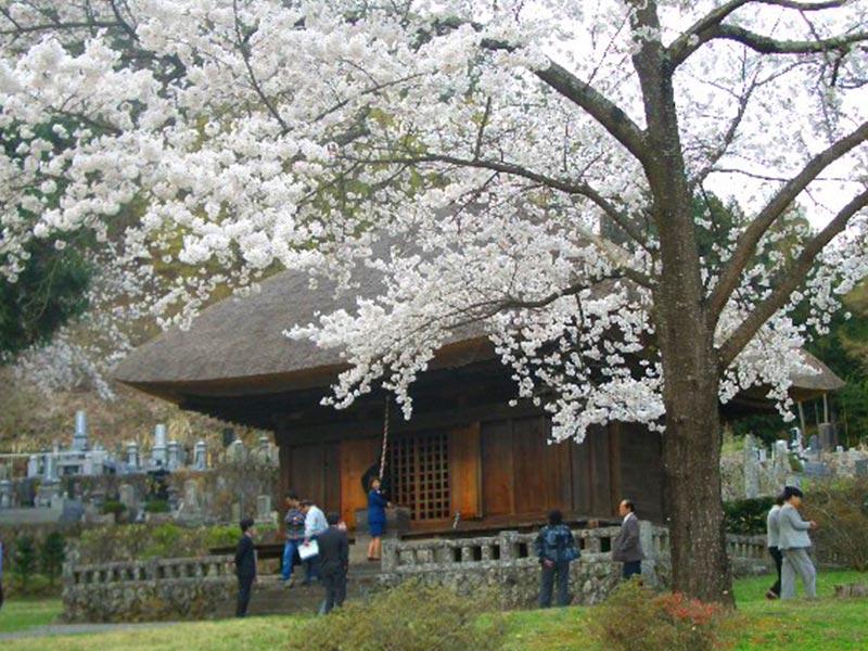中禅寺薬師堂(重要文化財)